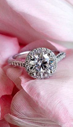 Love this delicate, gorgeous engagement ring.