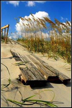 Summer Picture #38: Sandy Plank (von mgm photography.)