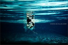 Senior Photographer Underwater swimming image