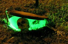 ohhh sooo cool! my husbands gonna get me when he sees me digging a small hole in the yard but will be soooo worth it!!