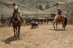 What it's Like to Go to an Authentic Spring Cattle Branding in Montana