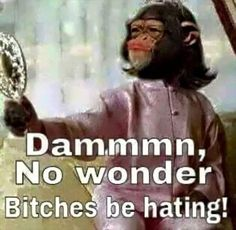 Funny Pictures Of The Day 48 Pics - Funny Monkeys - Funny Monkeys meme - - Funny Pictures Of The Day 48 Pics The post Funny Pictures Of The Day 48 Pics appeared first on Gag Dad. Funny Shit, Funny As Hell, Haha Funny, Funny Jokes, Funny Stuff, Funny Things, Funny Monkey Memes, Monkey Humor, Random Stuff