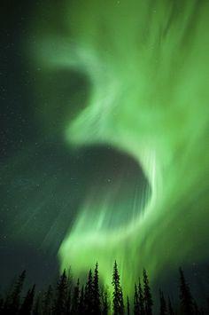 """""""Aurora Borealis (Sweden) by Miles Morgan. """""""