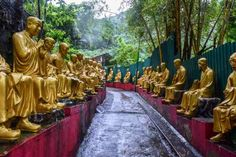 What to do in Hong Kong Go to 10,000 Buddhas Monastery