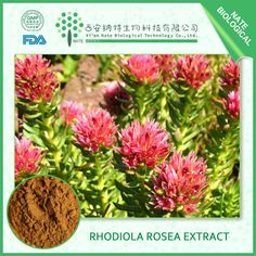 Rhodiola rosea extract http://www.natesw.com/Copy%20of%20Chinese%20Usnea%20extract