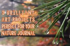 For some, art and nature go hand in hand. Add these projects to your nature journal for fun artistic expression.