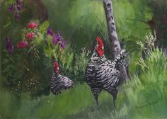 Original Watercolor Painting 7 x 10 Barred Rock by syoderart, $50.00
