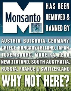 Monsanto is our enemy... every country in the world knows this while the U.S. just ignores the facts - WHY - you can bet MONEY had a lot to do with it... If you don't believe our government is owned you only fooling yourself...