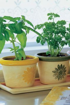 3 DIY Herb Gardens You'll Want to Grow