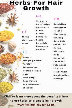 Herbs For Hair Growth, Hair Growth Tips, Hair Care Tips, Hair Growth Food, Rosemary For Hair Growth, Healthy Hair Tips, Healthy Hair Growth, Natural Hair Tips, Natural Hair Styles