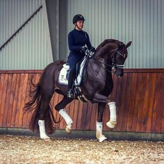 Our #thursdaymotivation pic is a #Repost of one of @eqperformance favourite very talented #dressage riders @cathrinedufour and her amazing horse Bohemian