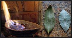 Brûlez quelques feuilles de laurier chez vous. Tout le monde aura envie de faire la même chose.