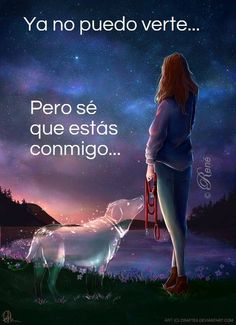 New memes sad de gatos Ideas Love My Dog, Miss My Dog, Image Tigre, Pet Loss Grief, Funny Animals, Cute Animals, Dog Quotes Love, Pet Remembrance, Dog Heaven