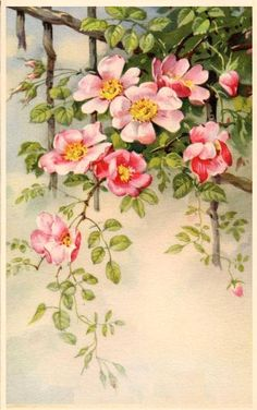 vintage mother's day postcards - Google Search