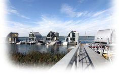 Schwimmende Ferienhäuser am Geierswalder See - Lausitz Resort
