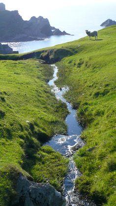The Shetland Islands in Scotland.