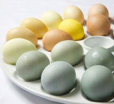 DIY: Naturally Dyed Easter Eggs (Lauren Conrad.com)