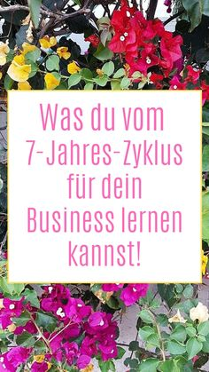 7-Jahres-Zyklus für dein Business   ELIZA SCHWARZ Be Patient, Life Cycles, New Start, Roots, Main Hoon Na, Other, Learning, Tips
