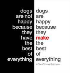 SO true. My dogs play tug-o-war with bobby pins and twisty ties. Sometimes I wish I was a dog. All Dogs, I Love Dogs, Puppy Love, Dogs And Puppies, Animal Quotes, Dog Quotes, Funny Quotes, Dog Sayings, Pet Memorials