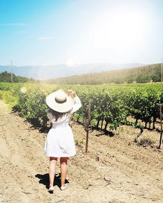 Exploring the rosé fields in France  #provence #summerinmaje #rosélifestyle