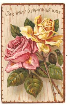 Birthday Congratulations yellow and pink roses antique postcard embossed picclick.com