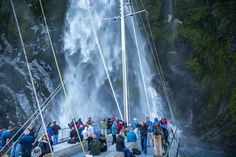 "Milford Sound Day & Overnight Cruises Real Journeys Explore the magnificent Milford Sound fiord either as a day cruise (scenic or nature) or overnight cruise (which includes accommodation, activities, dinner and breakfast. We also offer coach connections from Queenstown and Te Anau which connect to our Milford Sound cruises."" Our family business was founded in Fiordland in the 1950's by tourism and conservation pioneers Les and Olive Hutchins. Te Anau, Milford Sound, Tours, South Island, Family Business, Cruises, Niagara Falls, Conservation, New Zealand"