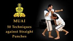 MUAI - 50 Techniques against Straight Punches (The original Muay Boran) --> youtu.be/4vbIcO4VudI | Pahuyuth - The origin of Thai fighting | Traditional fighting knowledge |Êancient martial arts | Thai martial arts | self-defense | School in Berlin Germany | #Pahuyuth