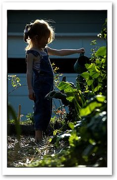 Herb Growing for Kids