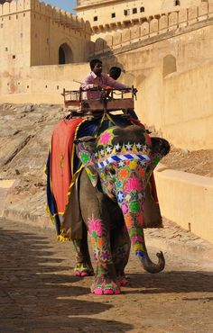 An india elephent has finished carriring a touist from foot of the hill to Amber fort and now she returns back to rest, Jaipur, Rajastan, İndia By Alika