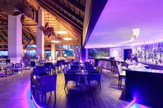 Hoteles 5 estrellas - Restaurante Champagne Bar | Hotel Asia Gardens