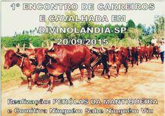 Festas de Carros de Boi: Os carros de boi cantaram no 1º Encontro de Carrei...