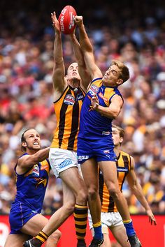 2015 Toyota AFL Grand Final - Hawthorn v West Coast - Brad Sheppard of the West Coast Eagles spoils a mark attempt by David Hale