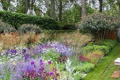 RHS Chelsea Flower Show 2006. Tom Stuart Smith: The Daily Telegraph Garden
