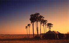 jacks camp, botswana