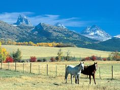 Teton Valley Idaho. I miss it so much:(