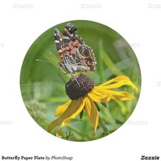 Butterfly Paper Plate 7 Inch Paper Plate