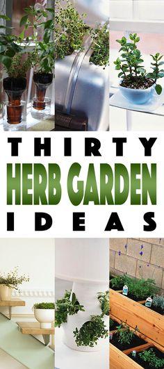 Herb Gardens 30 great Herb Garden Ideas