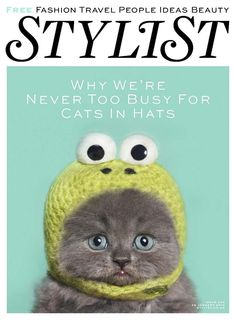 Stylist puts cat in frog hat in front cover because they are geniuses.