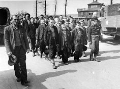 Gleiwitz was a sub-camp of Auschwitz and was made up of four smaller camps working for  various industrial companies. The Nazis transported Jews from Auschwitz to sub-camps like Gleiwitz through death marches. The prisoners were forced to make these long journeys either on foot or on freight cars. The picture above shows prisoners marching from Auschwitz to Gleiwitz.
