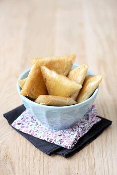 BricksQuiRit5 Petits samossas jambon et fondue de poireaux