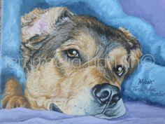 Pet portrait, 8 x 10 , acrylic painting