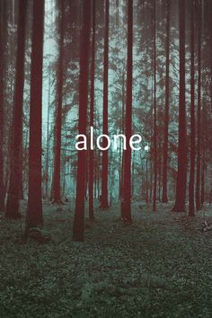 Sometimes I want to be alone , and the woods are the place my soul is free to roam