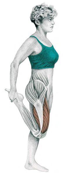 30. Knee Flexion