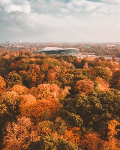Gliwice Arena, Poland - Chrobry Park in autumn🍂 Bright Pictures, More Pictures, Peter And Paul Cathedral, Forest Sounds, Old Town Square, Best Travel Guides, Autumn Park, Cities In Europe, Winter Photos