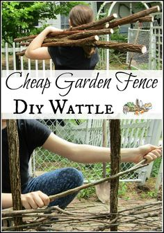DIY Wattle Cheap Garden Fence l Step by step instructions to make your own FREE . DIY Wattle Cheap Garden Fence l Step by step instructions to make your own Cheap Garden Fencing, Diy Garden Fence, Diy Garden Decor, Garden Landscaping, Cheap Garden Ideas, Florida Landscaping, Garden Trellis, Gardening For Beginners, Gardening Tips