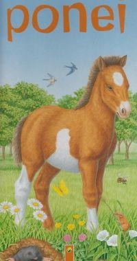 Micutul ponei