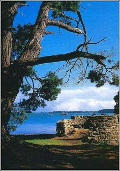 Bretagne - golfe du Morbihan - Ile Berder
