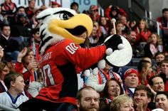 Capitals mascot, Slapshot. It's DC of course the mascot is going to be a BALD EAGLE!