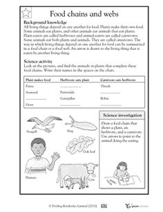 Food chains and webs - Worksheets & Activities | GreatSchools