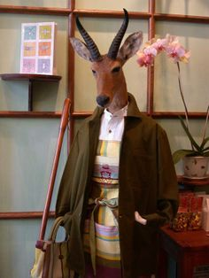 Deyrolle (Paris) has a great sense of humor with its taxidermied (is that a word?) animals.